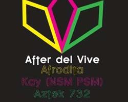 Flyer After Vive Web