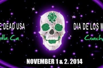 dia-de-los-muertos-day-dead-2014